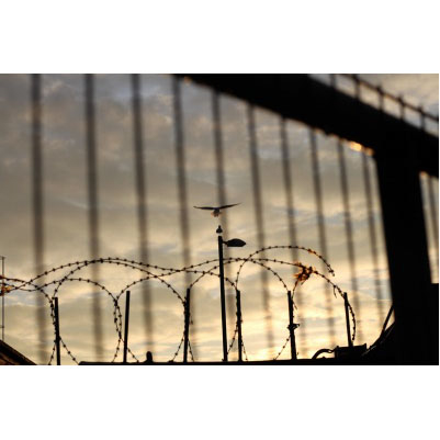 Razor Wire Dawn Attack