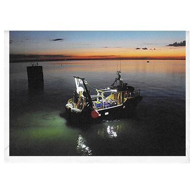 Catching the Evening Tide - card