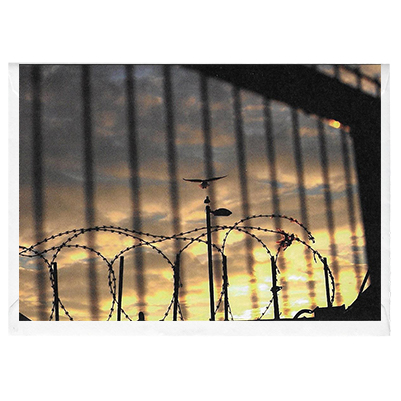 Razor Wire Dawn Attack - card